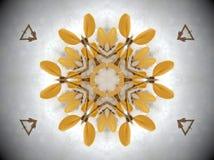Gul växt i snöMandala Royaltyfria Bilder
