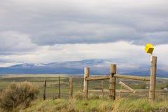 Gul voljär på ett berg för staketIn Colorado With svart i bakgrund arkivfoton