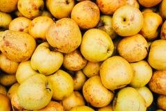 Gula äpplen på hyllan i supermarket Arkivbild