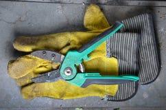 Gula arbeta i trädgården handskar och gräsplansekatör Royaltyfria Foton