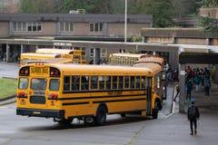 Gula bussar som lastar av ungar på skolan arkivbild