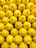 Gula citroner Royaltyfri Bild