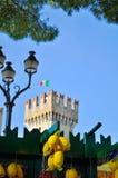 Gula citroner framme av slotttornet i stad i Italien i sommardag med den italienska flaggan Royaltyfria Foton