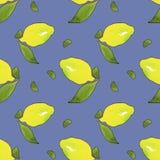 Gula citronfrukter med gr?na sidor som isoleras p? bl? bakgrund Vattenf?rg som drar den s?ml?sa modellen f?r design vektor illustrationer