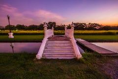 Gula fält av Crotalariajunceasunnhampa och den lilla vita bron på Phutthamonthon allmänhet parkerar, det Nakhon Pathom landskapet fotografering för bildbyråer