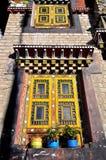 Gula fönster Royaltyfria Bilder
