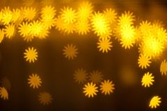 Gula glödande ljus, gula glödande blommor, belysning, maskros Royaltyfria Foton