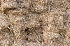 Gula guld- baler av vetehösugrör som staplas i en hög i stubbåker på en sommar fotografering för bildbyråer