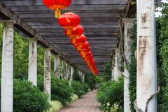 Gula kinesiska lyktor som är röda och Arkivfoto
