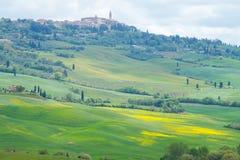Gula kullar av rapsfr?t med cypressar och gr?na ?ngar i Val D ?Orcia, Tuscany Staden av Pienza i bakgrunden royaltyfri foto