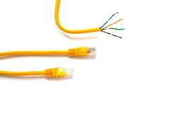Gula lapp-kablar med RJ45 för LAN-nätverk Arkivfoton