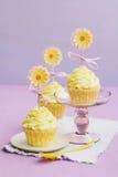 Gula muffiner arkivfoto