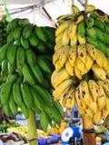Gula och gröna bananer på en filial royaltyfri bild