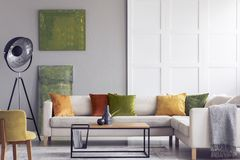Gula och gröna kuddar på den vita soffan i vardagsrum som är inre med målningar och lampan Verkligt foto royaltyfria bilder