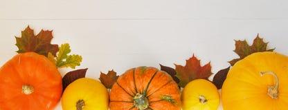 Gula och orange pumpor och höstsidor på vit träbakgrund för skördnedgång och tacksägelsetema royaltyfria foton