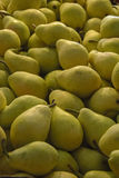 Gula pears Arkivfoto