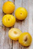 Gula plommoner Fotografering för Bildbyråer