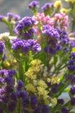 Gula rosa lila- och vitsommarblommor i bukettcloseupen royaltyfri foto