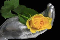 Gula Rose Royaltyfri Fotografi