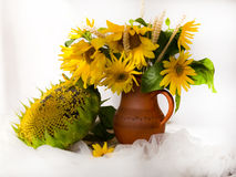 Gula solrosor i en keramisk vas på trätabellen med vit t Arkivfoton