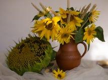 Gula solrosor i en keramisk vas på trätabellen med vit t Royaltyfri Fotografi