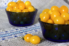 Gula tomater Royaltyfri Fotografi