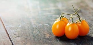 Gula tomater arkivbild