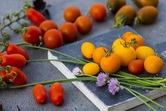 Gula tomater fotografering för bildbyråer