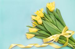 Gula tulpan med det gula bandet på blått Royaltyfri Bild