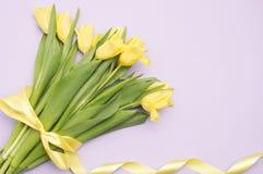 Gula tulpan med det gula bandet på lilor Royaltyfri Bild