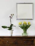 Gula tulpan och orkidér Royaltyfri Fotografi