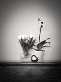 Gula tulpan och orkidér Royaltyfri Foto