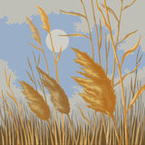 Gula vasser i natur i höst Royaltyfri Illustrationer