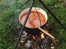 Gulas a préparé sur le feu en bois photographie stock
