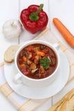 Gulaschsuppe mit Stangenbrot, Fleisch und Paprika in der Schale Stockfotos