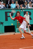 Gulbis Ernests - Latv Star (22) Stock Photography