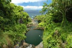 Gulch de Oheo, Maui Fotos de Stock