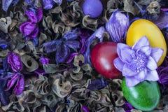 Guld- ägg över grön lutningbakgrund Fotografering för Bildbyråer