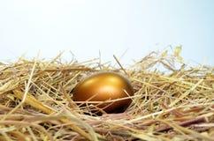Guld- ägg Fotografering för Bildbyråer