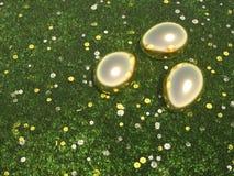 Guld- ägg som ligger i grön äng Arkivfoton