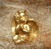 guld- ängel Royaltyfria Bilder