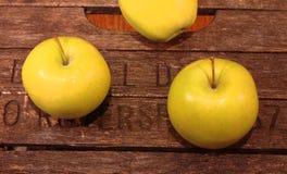 Guld- äpplen på ett tappningfall Royaltyfri Foto