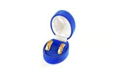 Guld- örhängen Arkivfoto