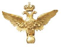 guld- örn Royaltyfri Fotografi