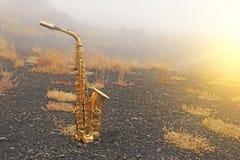 Guld- Alto Saxophone Lies på den svarta bakgrunden Romantiker och fotografering för bildbyråer