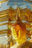 Guld- bärnstensfärgade buddha på Wat Doi Suthep Chiang Mai Thailand Arkivfoton