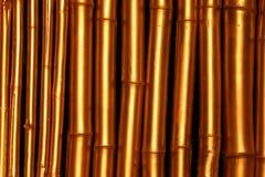 guld- bambu Fotografering för Bildbyråer