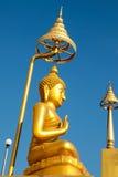 Guld- bild buddha i templet Arkivfoto