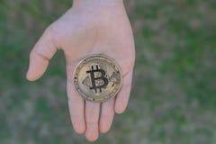 Guld- Bitcoin i händerna av ett barn på bakgrunden av grönt gräs Stigning upp bitcoin arkivfoton