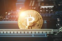 Guld- Bitcoin mynt och digitalt videokort för dator Arkivbild